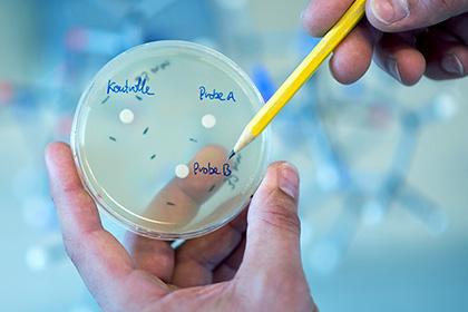 Раннее использование антибиотиков может навредить