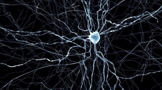 Инжекционный гель ускорит восстановление нервной ткани